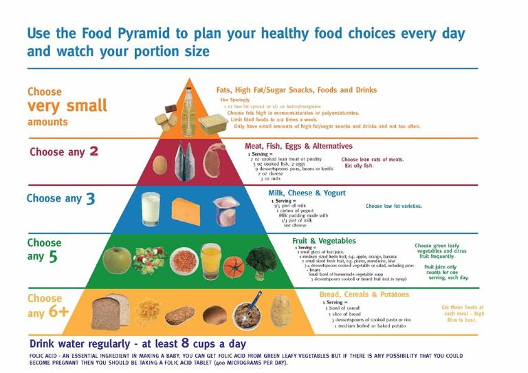 Food Pyramid Chart For Kids I9 Shotstopper Coaching